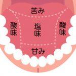 口の中と歯の働き(その2)