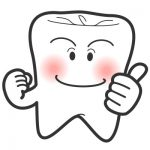 3.歯の仕組み・形・大きさ(その4)